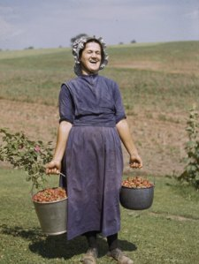 howell-walker-laughing-mennonite-woman-carries-buckets-of-strawberries