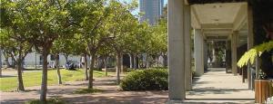 treewalk